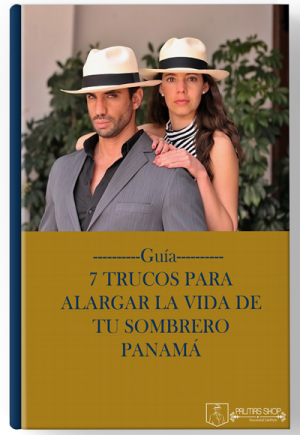 palmas-ebook-guia
