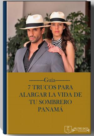 palmas-ebook-guia