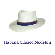 Varios Modelos Fedora (21)