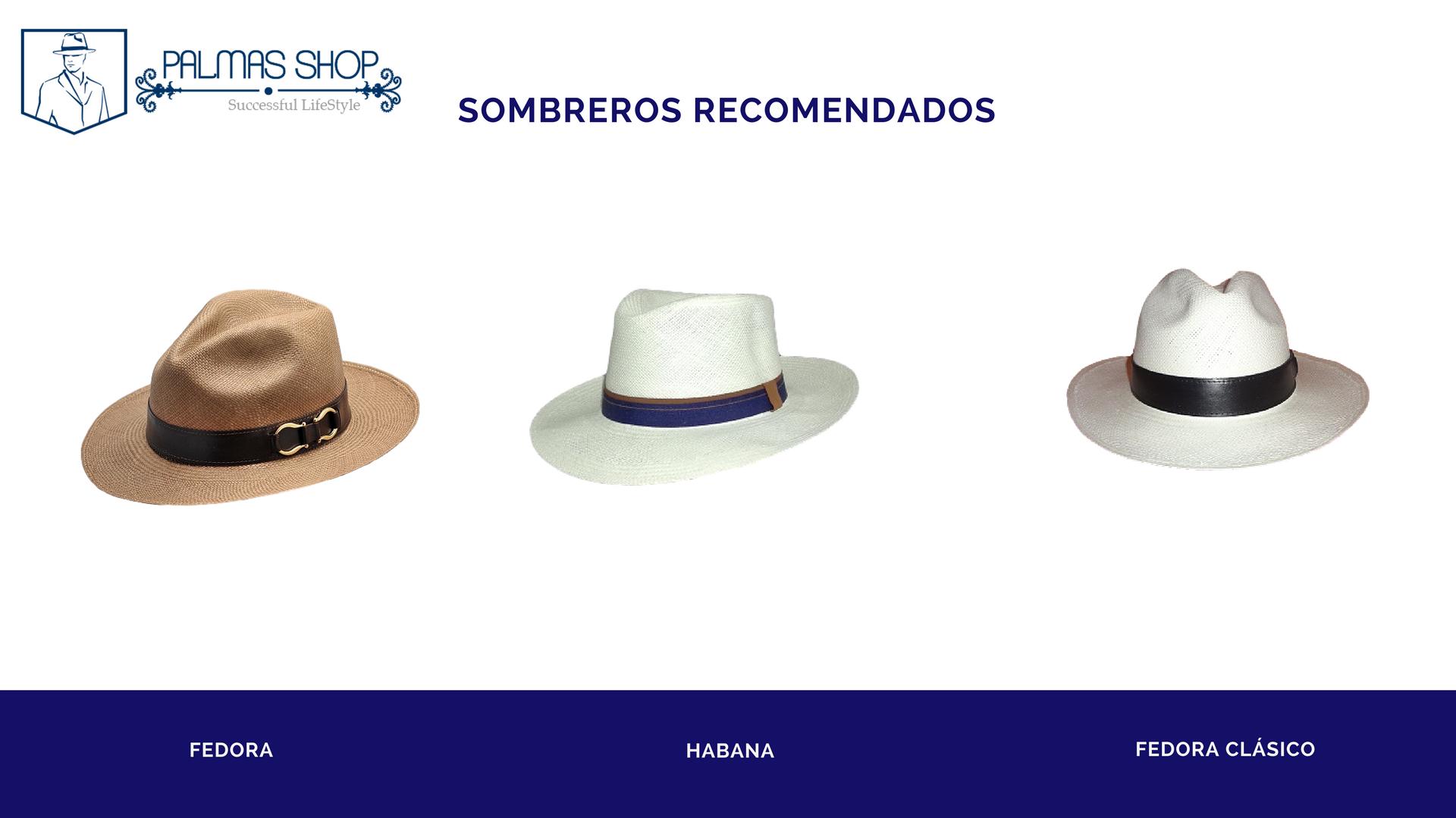 Blog | Palmas Shop |Sombreros Panamá en México